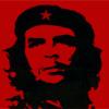 Che (4)